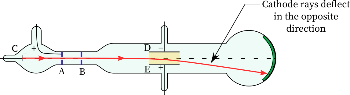 Cathode rays deflect in the opposite direction