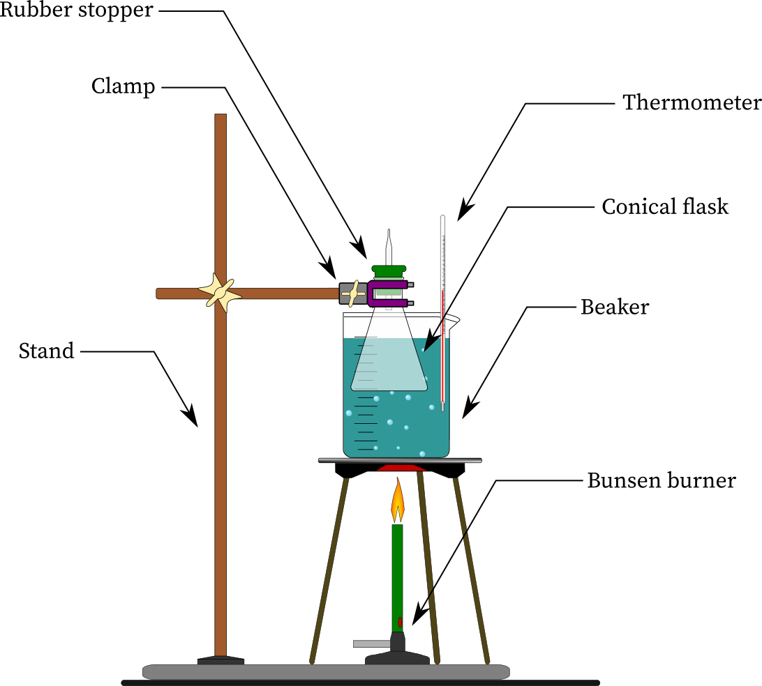 Charles' law experiment