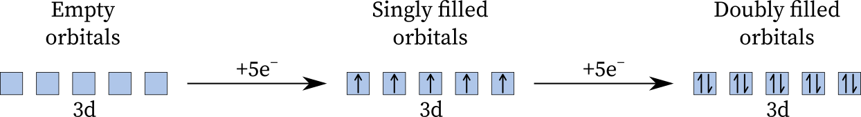 The filling of 3d orbitals as per the Hund rule